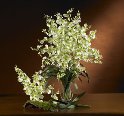 Dancing Lady Silk Orchid Green
