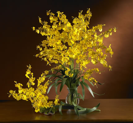 Dancing Lady Silk Orchid yellow