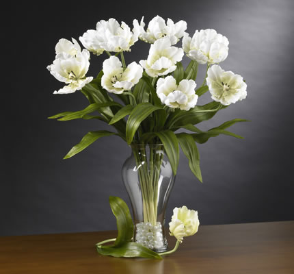 Parrot Tulips Stems White