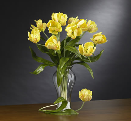 Parrot Tulips Stems Yellow
