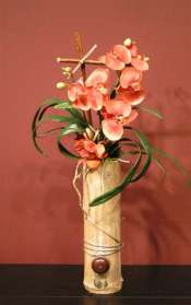 Phalenopsis Orange orchids in bamboo