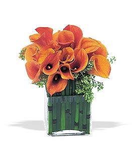 Modern flower design with orange calla lily