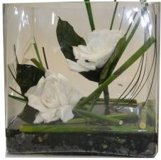 Preserved Gardenia Arrangement Idea