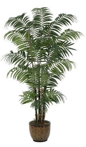 Bulb Areca Palm 96 inch