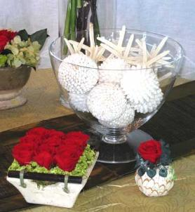 Preserved roses and shells
