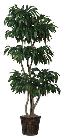 Mango Tree Artificial