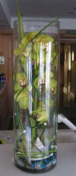 Green Phalenopsis orchids in glass