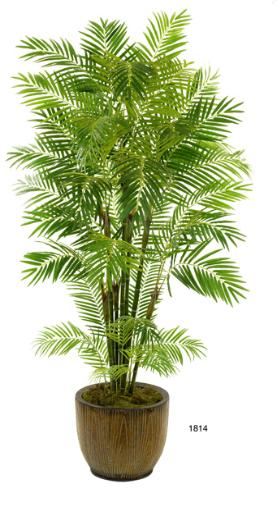 Areca Palm 96 inch