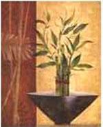 Lucky bamboo design
