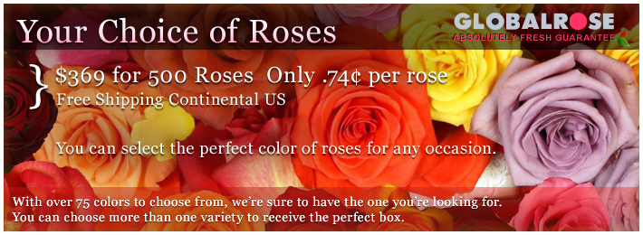 Your Choice of Roses Perfect for Weddings and Parties