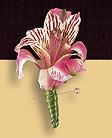 Boutanniere made with alstromeria flowers