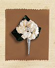 Stock Boutonniere for man