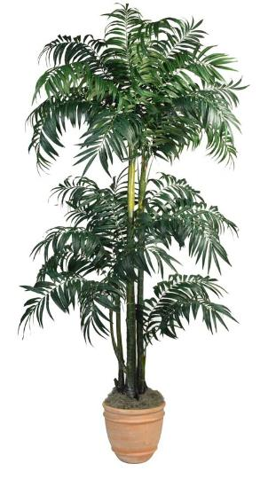 Potted Bulb Areca Palm. 116 inch