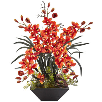 Cymbidium orchids in black container