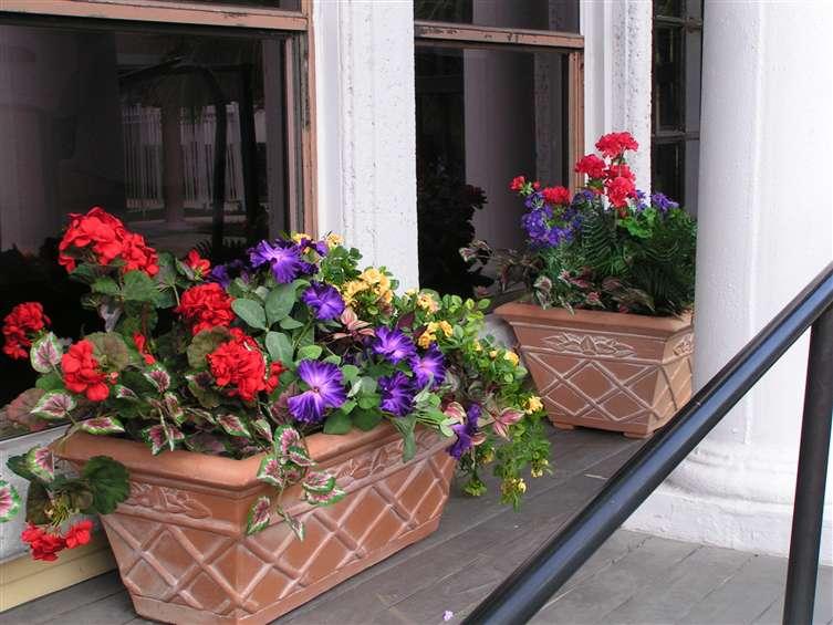 Italian Style arrangement