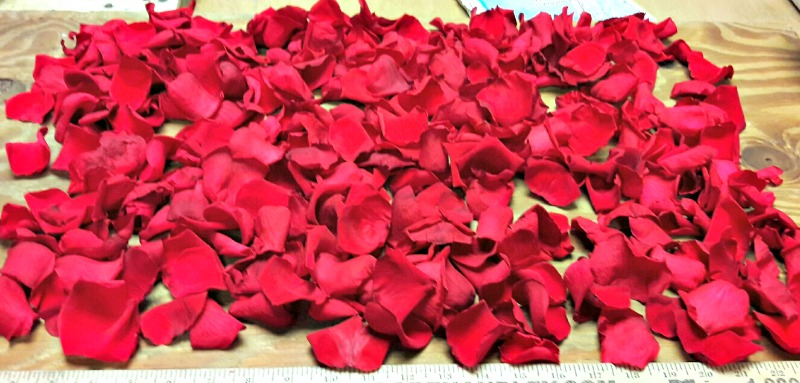 Preserved red roses petals