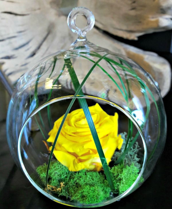 Glass terrarium with a preserved rose