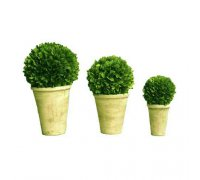 Preserved boxwood topiary balls