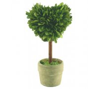 Preserved boxwood topiary mini hearts