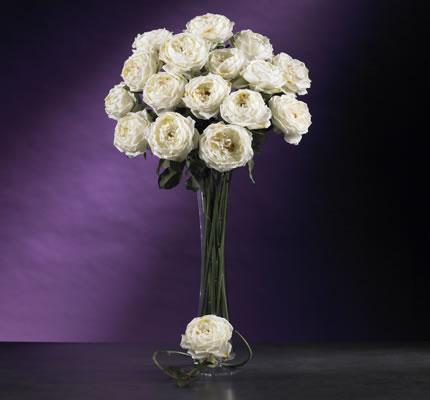 White Large Rose Stem