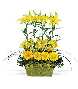 floral arrangement ideas