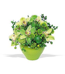 Modern flower design featuring cymbidium orchids