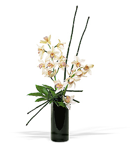 Tropical flower design featuring white cymbidium orchids and natural trellis