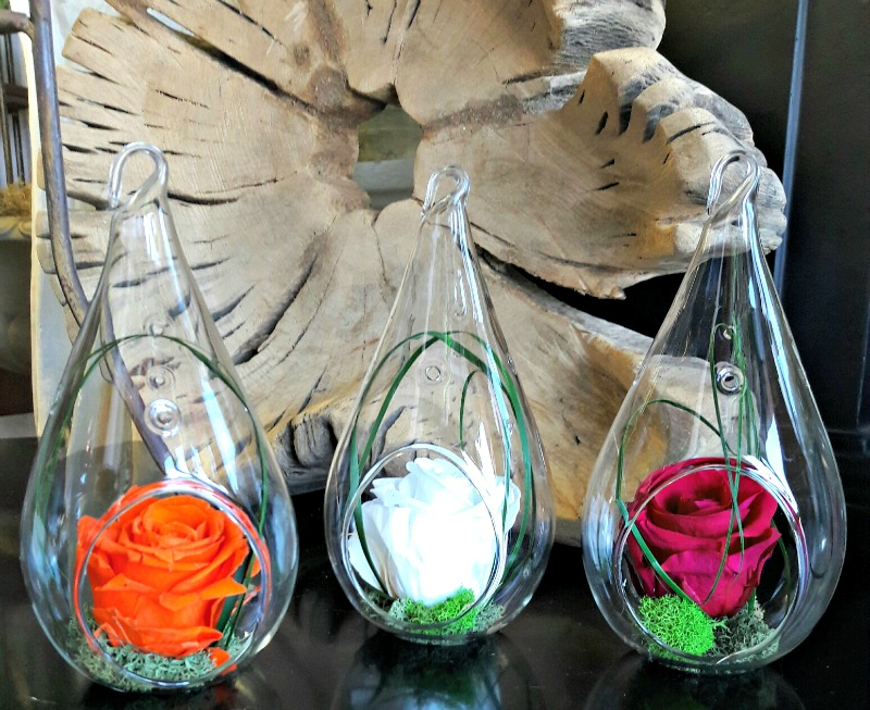 Glass terrariums. Set of three