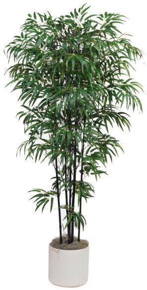 Twiggy Black Bamboo