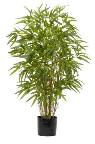 Twiggy Green Bamboo