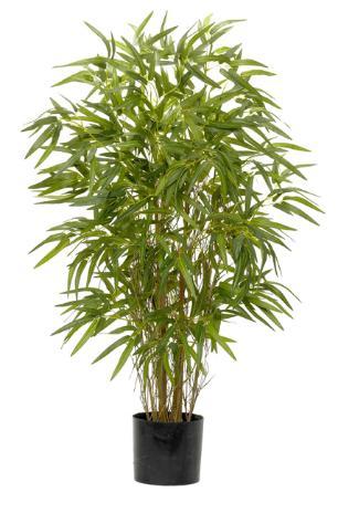 Twiggy Green Bamboo