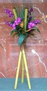 Bamboo stand and phalenopsis orchids