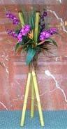 Bamboo Cymbidium orchid design