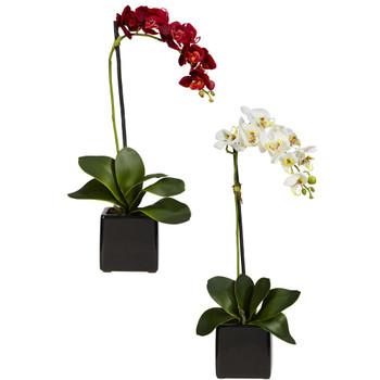 Phaleanopsis Orchid W/Black Vase Silk Arrangement