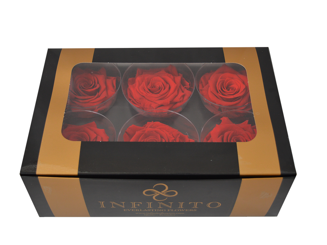 Six red roses box
