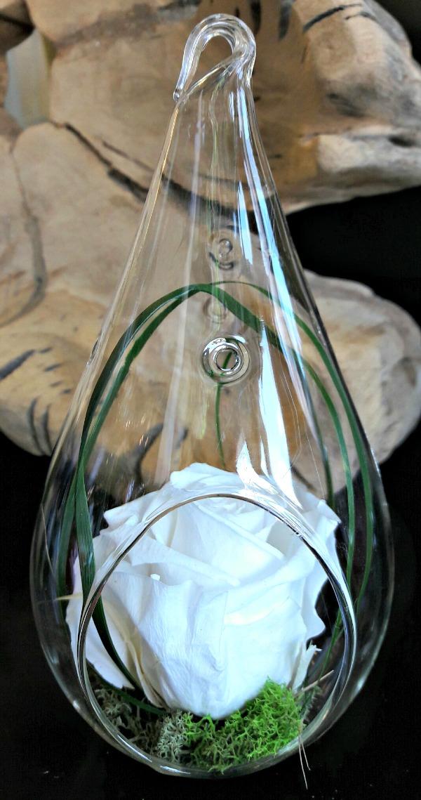 White preserved rose terrarium