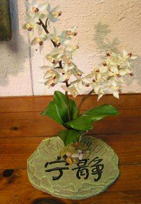 Zen design with white orchids. By Paolo C.